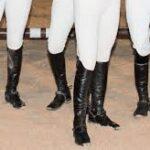 – Saddle Pads